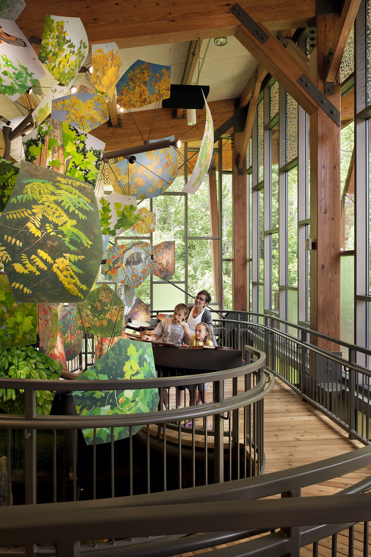 "The ""Life of the Forest"" exhibit at the Robinson Nature Center begins in the forest's vibrant summer canopy, and takes visitors on a journey through all four seasons, showing a full year of change in the forest."