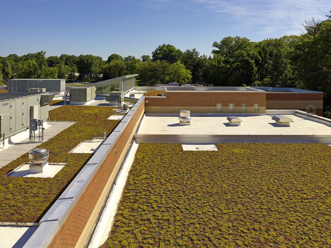 The LEED Gold certified school is a top energy performer for Montgomery County Public Schools and includes a 26,000-SF green roof, geothermal heating and cooling, a sun shade system, natural daylighting, and sustainable materials, among other green features.