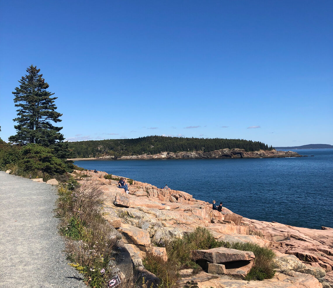 Daytime view in Acadia National Park